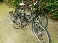Fahrräder